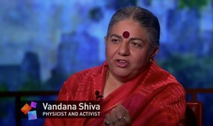Vandana Shiva Interview on the Problem with Genetically-Modified Seeds